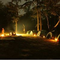 Night Tracking Camp