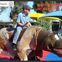 Geraldton Toyota Family Day