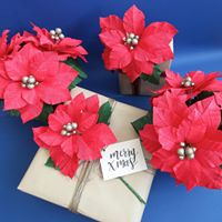 Christmas Paper Poinsettias with Miss Paper and Bloom