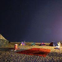 Campfire - Turtle Beach