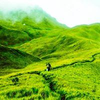 Mt. Pulag Akiki Trail 3D2N(FULL)