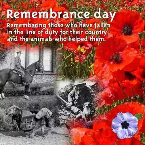 Dog Remembrance Day