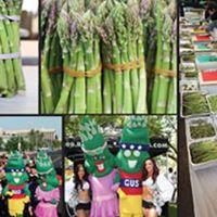 Asparagus Festival in Stockton