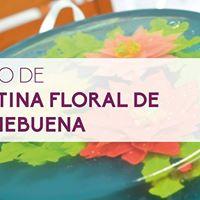 Curso de Gelatina Floral de Nochebuena