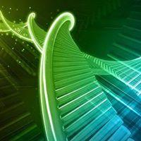 ThetaHealing Advanced DNA Practitioner Seminar