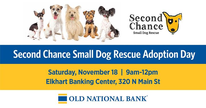 Second Chance Small Dog Rescue Adoption Day at Old National