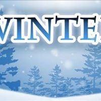 Winter Exhibition 2017