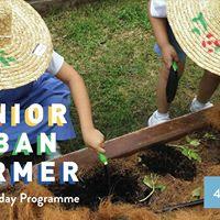 Junior Urban Farmer December School Holliday Programme