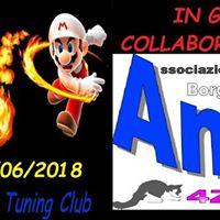 1 Expo Amici di Andrea Tuning Club A Borgomanero (NO)