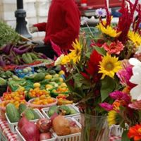 Pearland Business Womens Morning at Farmers Market