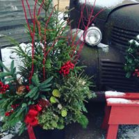 Create your own Christmas Greenery Pot