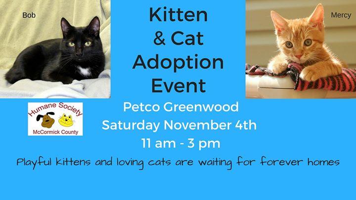 Cat & Kitten Adoption Event 11/04/17 Petco Greenwood at