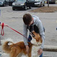 Lending Paws A Hand at the Pittsboro Annual Street Fair