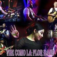 The Como la Flor Band at House of Blues Anaheim Ca.