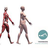 3 timers anatomikursus - med fokus p Fascia