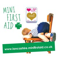 Salt Ayre Baby &amp Child Mini First Aid Class