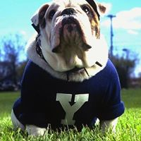Yale Class of 2013 Presents - The Game 2013