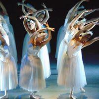 Swan Lake - The Vienna Festival Ballet
