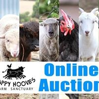 Happy Hooves Online Auction 2017