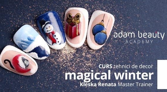 Curs Tehnici de decor Magical Winter cu Renata Kleska Satu Mare