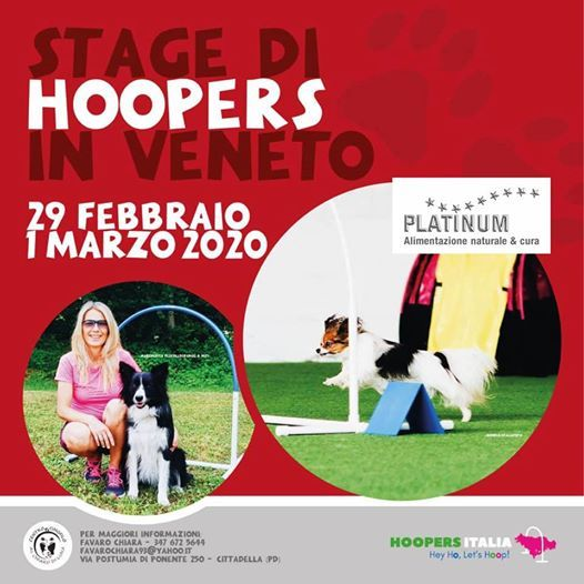 Stage di Hoopers in Veneto