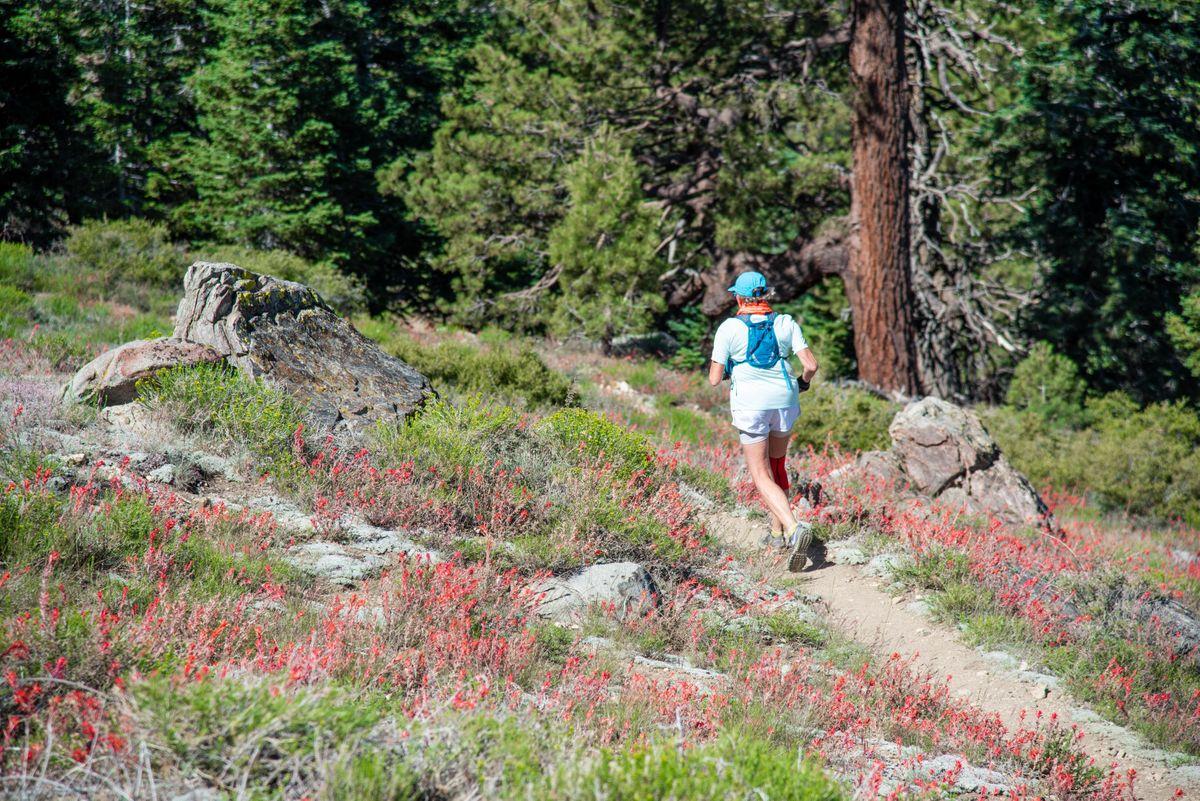 Pine Mtn  Enviro-Camp & Trail Run | Ojai
