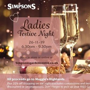 Charity Festive Ladies Night