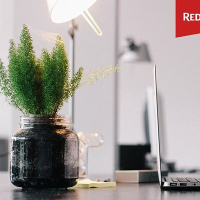 Willamette Valley OR - Free Redfin Home Buying Webinar
