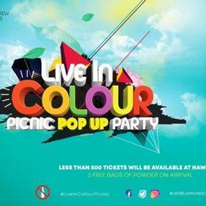 Live In Colour Picnic - 2020
