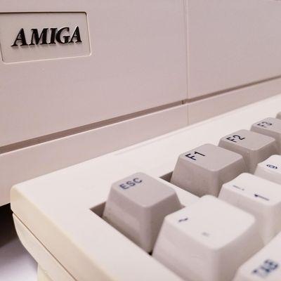 Sacramento Amiga Computer Club monthly meeting