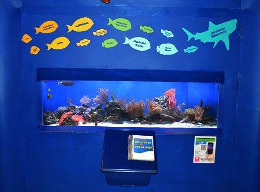 Lake Superior Marine Aquarium Club - LSZOO Monthly Meeting