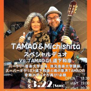 TAMAO&ampMichishita -