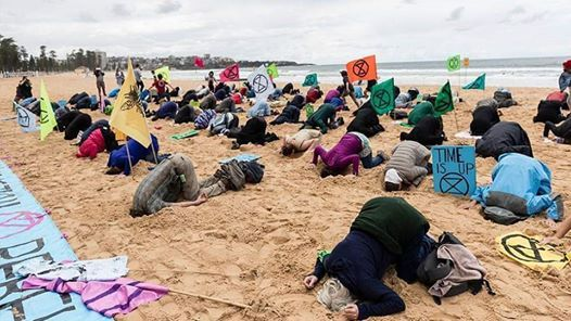 Sunshine Coast Heads in the Sand  Mooloolaba Beach