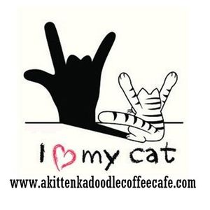 Sign Language with the Cats at A Kitten Kadoodle Coffee