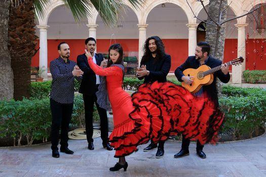 Almeraya Flamenca (ES)