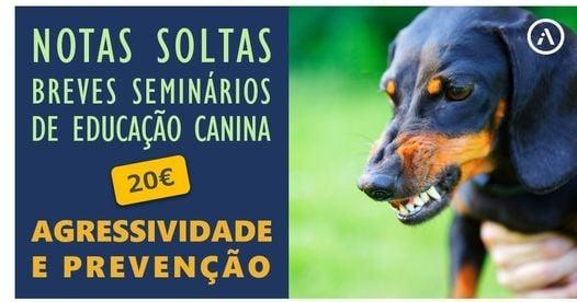 Agressividade canina e prevenção, 2 October | Event in Lisbon | AllEvents.in