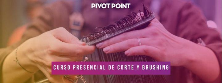 CURSO DE CORTE Y BRUSHING PRESENCIAL, 20 October   Event in Sarandí   AllEvents.in