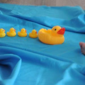 Musical Babies 1 - Actividad en ingls para BEBS desde 6 meses