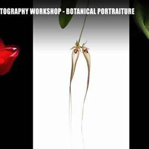 Masterclass on The Art of Botanical Portraiture.