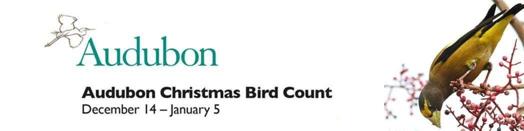 Audubon Christmas Bird Count - Henderson Bird Viewing Preserve