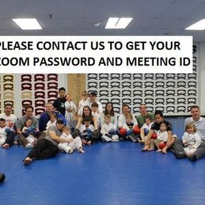 Free Trial Zoom Karate for Kids 4 to 10.  RSVP zoomkidskarategmail.com