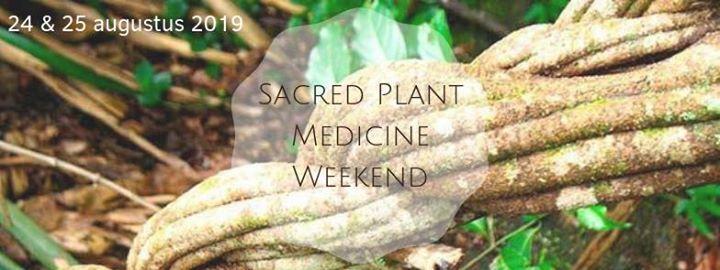 Sacred Plant Medicine Weekend