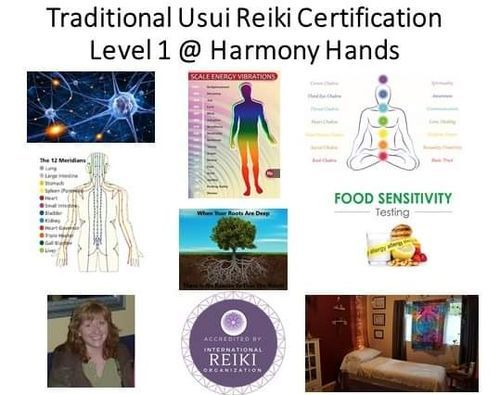 Traditional Usui Reiki Level 1 Practitioner Certification Course | Event in Terrace | AllEvents.in