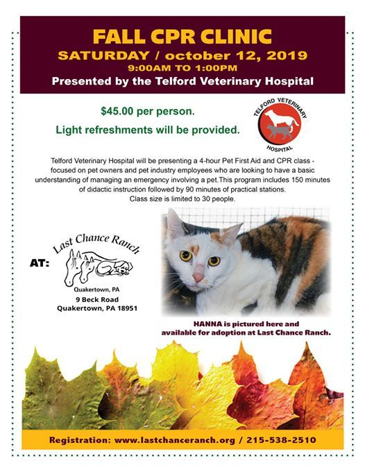 Pet CPR & First Aid Clinic at Last Chance Ranch, Quakertown