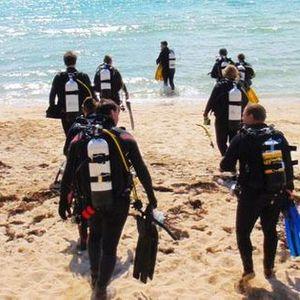 Free Sunday Morning Shore Dive