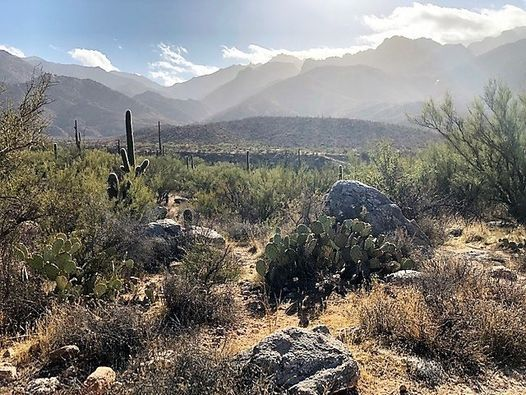 Day Retreat at Catalina State Park, 7 November | Event in Tucson | AllEvents.in