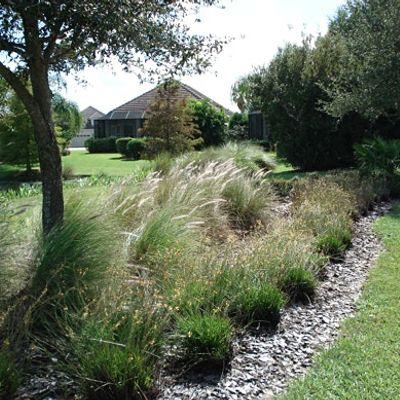 Salt Tolerant Plants & Irrigating with Reclaimed Water
