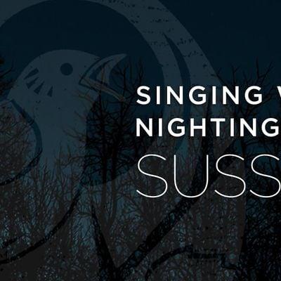Singing With Nightingales - Sussex
