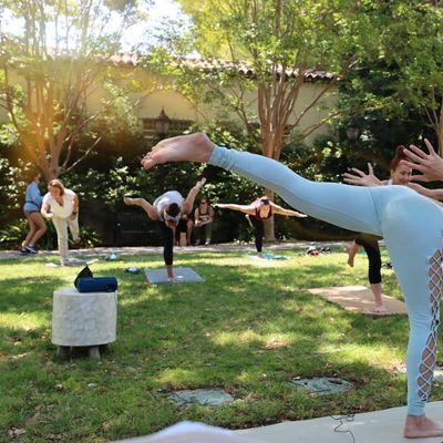 All Level Yoga with Eva - Virtual Yoga Class