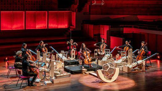 Maxim Shalygin - Cello Octet Amsterdam & Maya Fridman   Event in The Hague   AllEvents.in